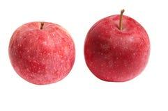Tasty,ripe an apples on a white. Stock Photos