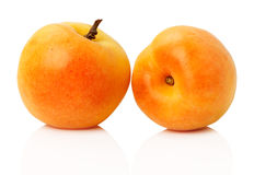 Tasty ripe apricots on the white background Stock Images
