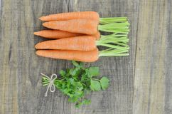 Tasty ripe carrots and herbs  on wooden. Background Stock Image