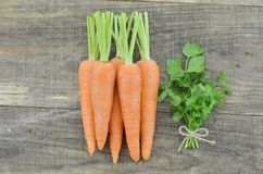 Tasty ripe carrots and herbs  on wooden. Background Royalty Free Stock Photography