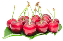 Tasty ripe cherry berries juicy and sweet fruits. On green fresh leafage isolated on white Royalty Free Stock Photos