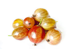 Tasty ripe gooseberry. Isolated on a white background Stock Photography
