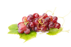 Tasty,ripe grape on a white. Stock Image