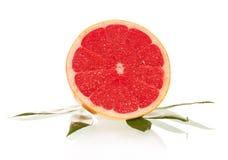 Tasty ripe Grapefruit Stock Image