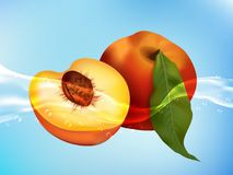 Tasty ripe peach in clean water. Realistic style. Royalty Free Stock Photography