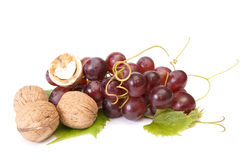 Tasty , ripe walnuts and grape. Royalty Free Stock Images