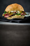 Tasty roast beef pastrami burger with pickles Royalty Free Stock Photography