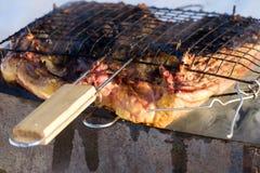 Tasty roast duck Royalty Free Stock Photos