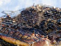 Tasty roast duck Stock Photos