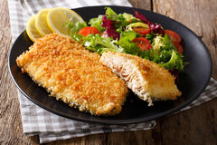 Tasty roasted Fish fillet in breadcrumbs and fresh vegetables cl. Ose-up on a plate. horizontal Royalty Free Stock Images