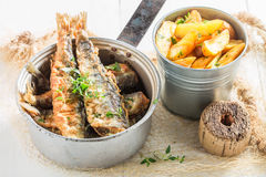 Tasty roasted herring fish with herbs and salt Royalty Free Stock Photography