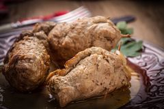 Tasty roulades beef on plate. Stock Images