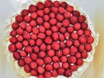 Cake with raspberries on top. Tasty, round, meringue cake with juicy fresh raspberries on top Royalty Free Stock Images