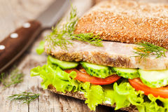 Tasty rye bread sandwiches with roast meat and vegetables Royalty Free Stock Images