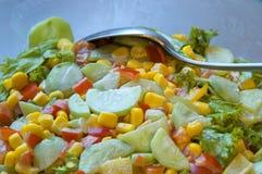 Tasty salad Stock Image