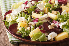 Tasty salad of beets, pineapple, cream cheese, cashews and green Royalty Free Stock Image