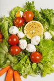 Tasty salad with cherry tomatoes, salad leaves, lemon, spices, carrot and quail eggs on white plate. Top view.  Royalty Free Stock Photography