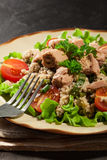 Tasty salad with couscous, tuna and vegetables Royalty Free Stock Photo