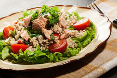 Tasty salad with couscous, tuna and vegetables Stock Image