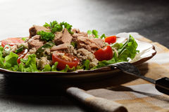 Tasty salad with couscous, tuna and vegetables Stock Photography