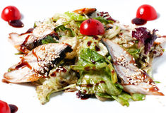 Tasty salad with fish and herbs Royalty Free Stock Photos