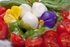 Tasty salad Stock Photo