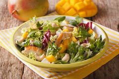 Tasty salad of grilled chicken breast, mango, arugula, lettuce a Stock Photos