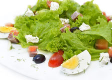 Tasty salad with salmon and egg Royalty Free Stock Image