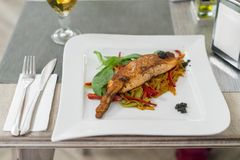 A tasty salmon fillet. Today`s dinner - a tasty salmon fillet - shot with Sony a7RIII + Sony FE 50mm Royalty Free Stock Images