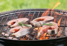 Tasty salmon steaks on the grill. Tasty salmon steaks on the grill, close-up Royalty Free Stock Photo