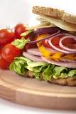 Tasty sandwic Royalty Free Stock Photos