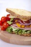 Tasty sandwic Stock Image