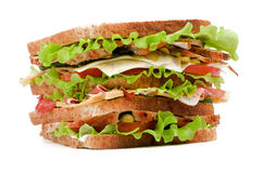 Tasty Sandwich Stock Photo