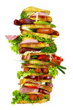 The tasty sandwich Stock Image