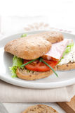 Tasty sandwich Royalty Free Stock Photo