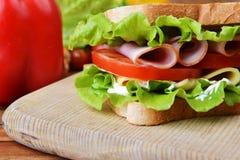 Tasty sandwich Stock Image