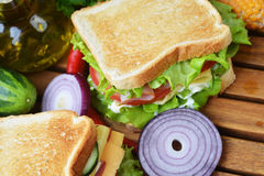 Tasty sandwich Royalty Free Stock Images