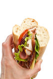Tasty Sandwich in Hand Royalty Free Stock Images
