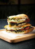 Tasty sandwich with meat, fried egg, cheese and pesto Stock Photography