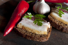 Tasty sandwich with salted lard (salo) Stock Images