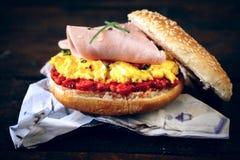 Tasty sandwich Stock Photography