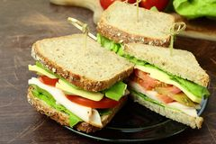 Tasty sandwiches Royalty Free Stock Photography