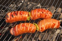 Tasty Sausages On The Hot Barbecue Charcoal Grill Close-up Royalty Free Stock Images