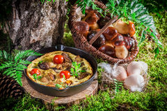 Tasty scrambled eggs in forest at sunrise Royalty Free Stock Image