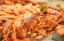 Tasty seafood on plate, red boiled crawfish and shrimps in restaurant ready for dinner. Selective focus. Stock Image