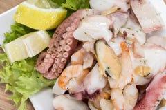 Tasty Seafood Salad Stock Image