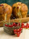 Tasty seasonal ingredient for muffins Stock Image