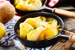 Tasty serving of raclette on potatoes with herbs stock image