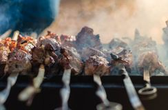 Tasty shish kebab on a charcoal grill. Clouse-up photo of the tasty shish kebab on a charcoal grill Royalty Free Stock Photos