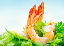 Tasty shrimp salad stock photo